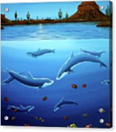Desert Dolphins Close  Acrylic Print by Lance Headlee