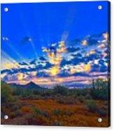 Desert Glory Acrylic Print