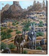 Desert Gypsy's Acrylic Print
