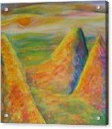 Desert Hiding 2 Acrylic Print