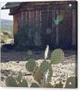 Desert Home Acrylic Print