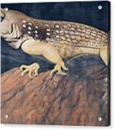 Desert Iguana Mural Acrylic Print