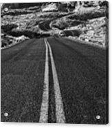 Desert Journey B/w Acrylic Print