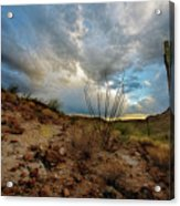 Desert Landscape With Clouds Acrylic Print