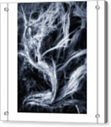 Desert Limbs Poster Acrylic Print