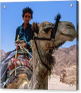 Desert Locomotion Acrylic Print