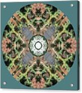 Desert Mandala Acrylic Print