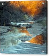 Desert Reflections Acrylic Print