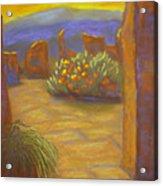 Desert Rose Acrylic Print by Marcia  Hero