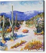 Desert Scene 2 Acrylic Print