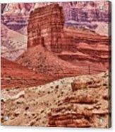 Desert Scene L Acrylic Print
