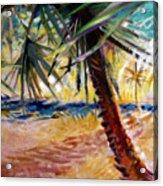 Desert Seashore Acrylic Print
