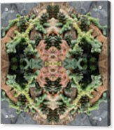 Desert Series 1 Of 4 Acrylic Print