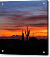 Desert Skyline  Acrylic Print