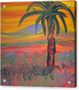 Desert Song By Bill Acrylic Print