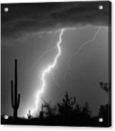 Desert Striking In Black And White Acrylic Print