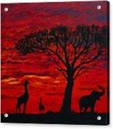 Desert Sunset 3 Acrylic Print