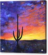 Desert Sunset 4 Acrylic Print