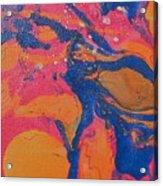 Desert Swirl Acrylic Print