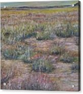 Desert Symphony Acrylic Print