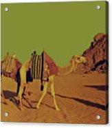 Desert Trek Acrylic Print