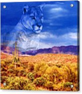 Desert Visions Acrylic Print by Lorraine Foster