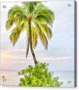 Deserted Beach Tioman Acrylic Print