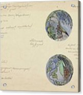 Design For A Brooch With Oriental Fruits, Carel Adolph Lion Cachet, C. 1874 - C. 1945 Acrylic Print