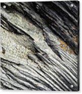 Detail Of Dry Broken Wood Acrylic Print