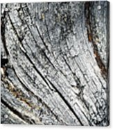 Detail Of Old Weathered Wood Acrylic Print