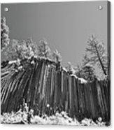 Devil's Postpile - Frozen Columns Of Lava Acrylic Print