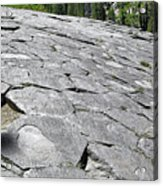 Devils Postpile - Nature And Science Acrylic Print by Christine Till