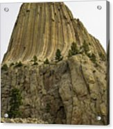 Devils Tower 5 Acrylic Print
