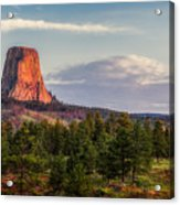 Devil's Tower Morning Acrylic Print