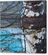 Pic Abw Acrylic Print