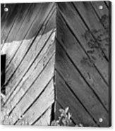 Diagonals Acrylic Print
