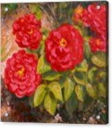Diane's Roses Acrylic Print