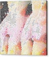 Different Radius Acrylic Print