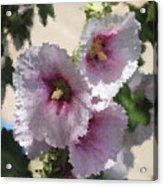 Digital Artwork 1414 Acrylic Print