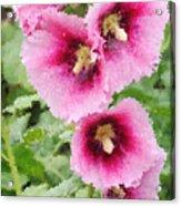 Digital Artwork 1422 Acrylic Print
