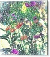 Digital Pencil Sketch Flowers Acrylic Print