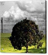 Digital Photography - The Prisoner Acrylic Print