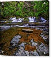 Dingmans Creek Acrylic Print