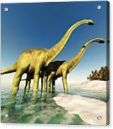 Dinosaur World Acrylic Print
