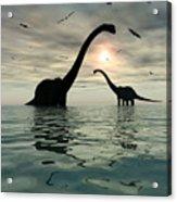 Diplodocus Dinosaurs Bathe In A Large Acrylic Print