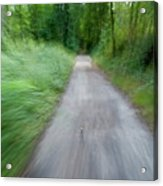 Dirt Path And Surrounding Bush Seen From A Cyclist's Point Of View Acrylic Print