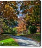Dirt Road Through Vermont Fall Foliage Acrylic Print