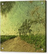 Dirt Road To The Fields Acrylic Print
