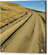 Dirt Road Winding Acrylic Print by Sami Sarkis