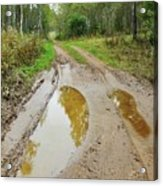 Dirty Autumn Road With Brown Pools After Rain Acrylic Print